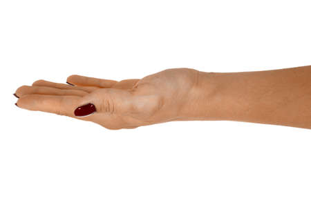 Open hand giving something, beautiful womans skin, red manicure. Isolated on white background. Stock Photo