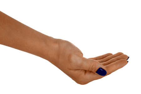 anything: Palm up showing anything, natural females skin, blue manicure. Isolated on white background.