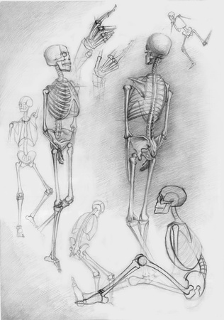 Set of human skeletons in different poses,pictured by photographer by a pencil Stock Photo - 8352539