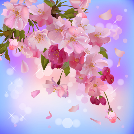 Vector spring background with gentle  branch of  beautiful flowers Vector