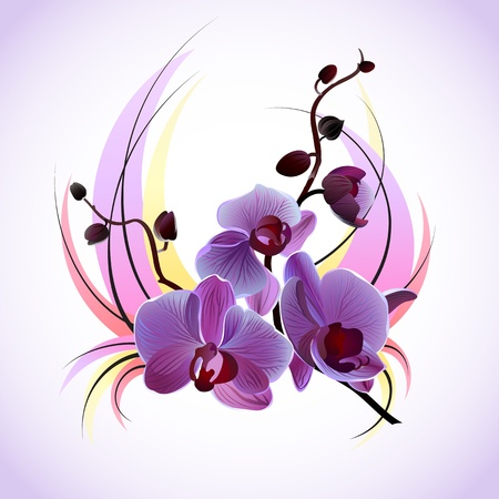 florale: Vektor-Grußkarte mit violetten Orchideen Illustration