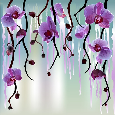 Vector background with branches of violet orchids