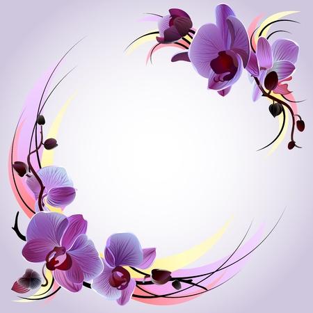 紫色の蘭の花の枝を持つベクトル グリーティング カード