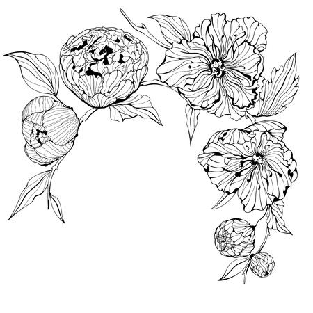 zwarte en witte achtergrond met zachte pioen bloemen Stock Illustratie