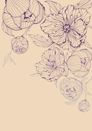 垂直方向の形式で穏やかな牡丹の花とピンクの背景  イラスト・ベクター素材
