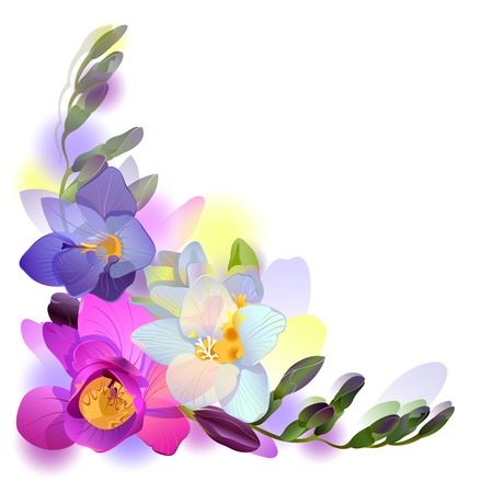 greeting background with pictorial freesia flowers