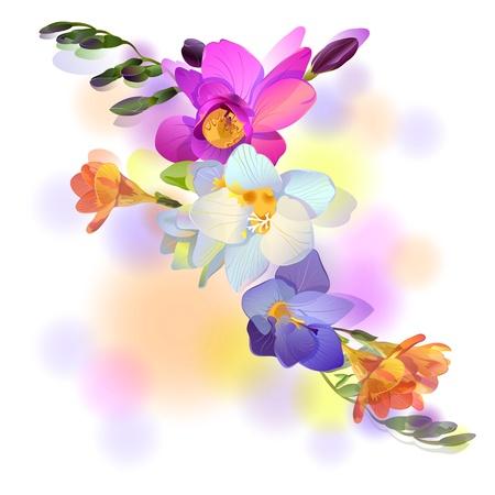 Vector hälsning bakgrund med bild freesia blommor Illustration