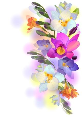 begroeting achtergrond met picturale fresia bloemen Stock Illustratie