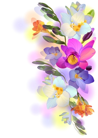 watercolor flower: greeting background with pictorial freesia flowers Illustration
