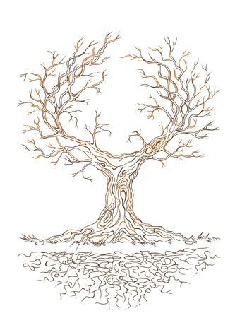 Vector lineair grafisch oude grote stale vertakte boom Stock Illustratie