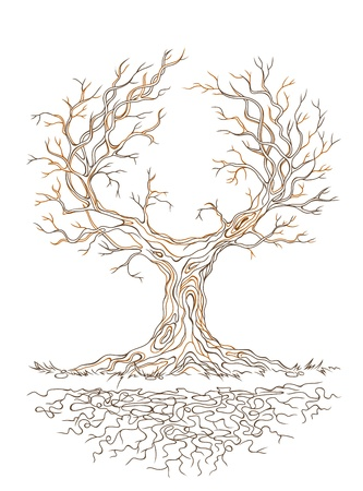 Vector linear graphic old big stale branchy tree Vector