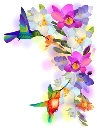 illustration greeting background with flitting humming-bird which brings gentle branch of beautiful pink orchids