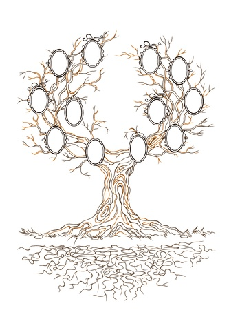 old family: linear graphic old big stale branch tree with frames for family portraits