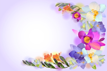 pictorial: Vector greeting background with pictorial freesia flowers in horizontal format
