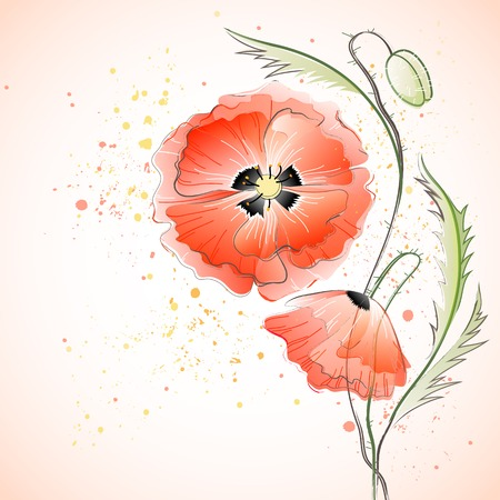 Vector greeting card with red gentle poppy flowers Vector