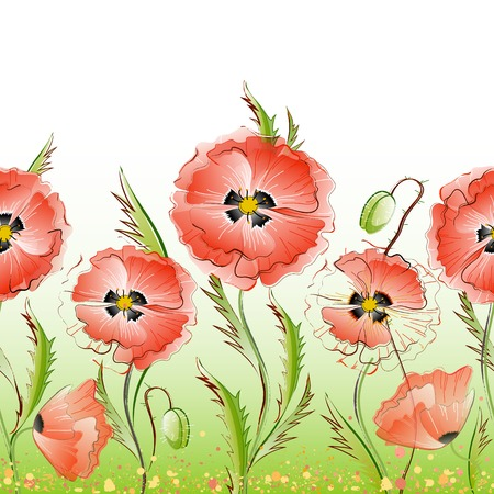 Vector seamless pattern with red gentle poppy flowers Vector