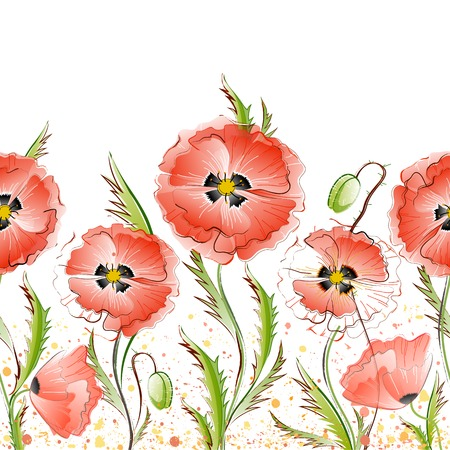 Vector seamless pattern with red gentle poppy flowers on the white background Vector