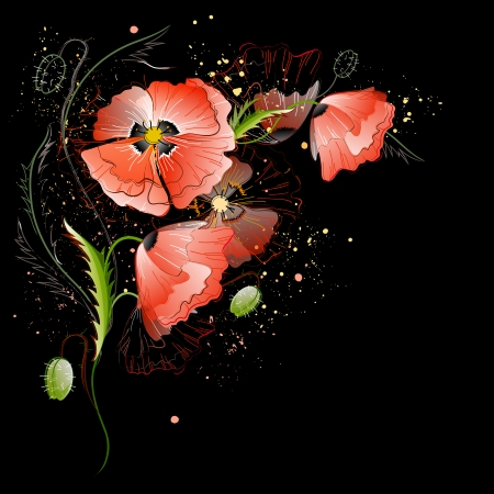 Vector black greeting card with red gentle poppy flowers Vector