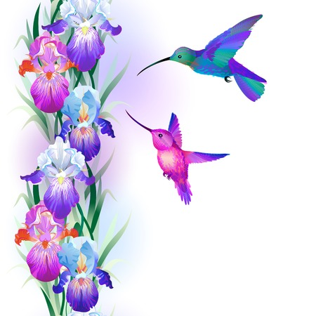 seamless pattern with bright multicolored Iris flowers and hummingbirds