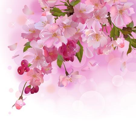 Vector spring achtergrond met zachte tak van mooie bloemen