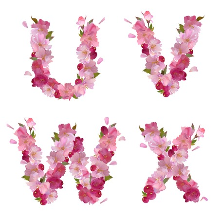 spring alphabet with gentle pink sakura flowers letters U,V W,X Vector
