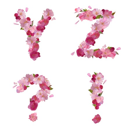 spring alphabet with gentle pink sakura flowers letters Y,Z and punctuation marks Vector