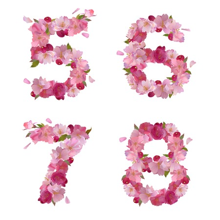 6 7: Vector figures 5,6,7,8 with gentle pink spring sakura flowers Illustration