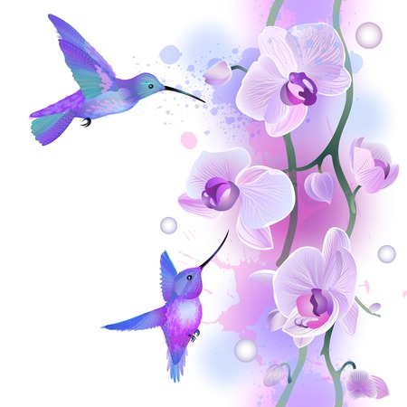 Vector seamless pattern with gentle violet orchids flowers and hummingbirds