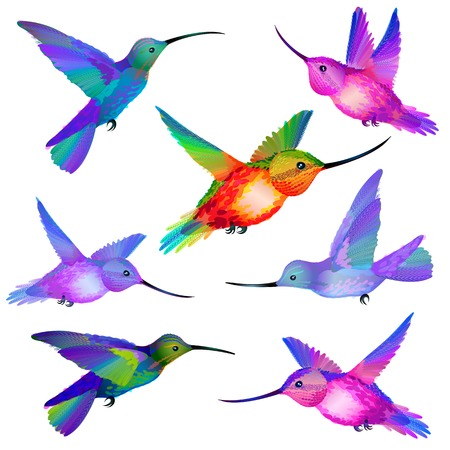 Vector Set of isolated flying Humming birds in green, violet, orange, pink and blue colors Çizim