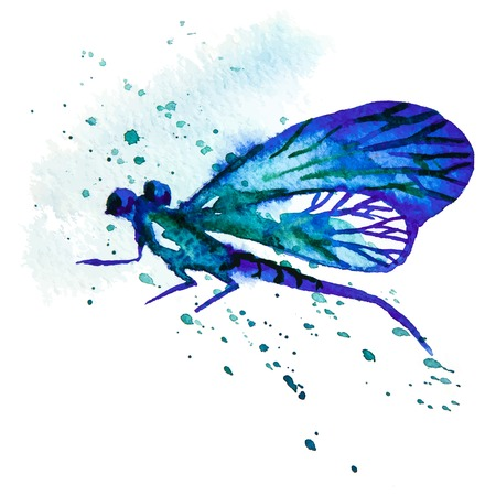 dragonfly wing: Vector greeting background with beautiful watercolor flying blue dragonfly Illustration