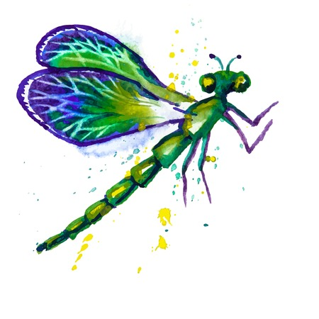 dragon fly: Vector greeting background with beautiful watercolor flying green dragonfly