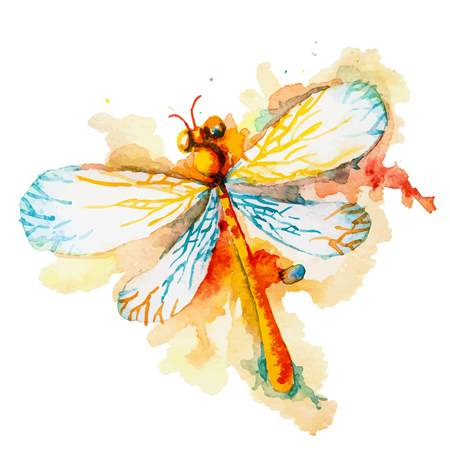 dragonfly wings: Vector greeting background with beautiful watercolor flying orange dragonfly Illustration