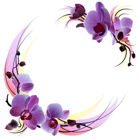 violeta: tarjeta de felicitaci�n con orqu�deas violetas suaves ramas, aislado en el fondo blanco