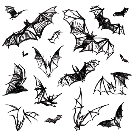 pictured: Vector hand pictured charcoal grunge background with bunch of flying black bats,isolated on the white