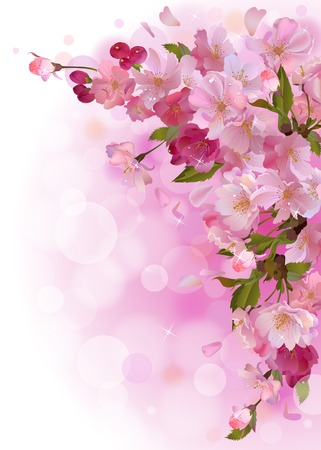 vertical spring background with gentle branch of beautiful flowers