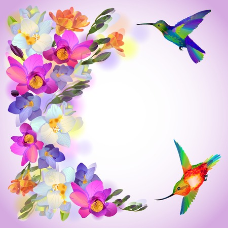 Vector lilac greeting background with flitting humming-bird with and beautiful freesia flowers Çizim