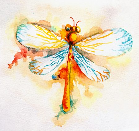 candy background: Hand drawn greeting background with beautiful watercolor flying orange dragonfly Stock Photo