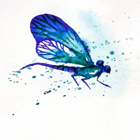 dragon fly: Hand drawn greeting background with beautiful watercolor flying blue dragonfly Stock Photo
