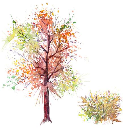 shrub: Big hand drawn watercolor splash green orange autumn tree and shrub, isolated on the white background Stock Photo