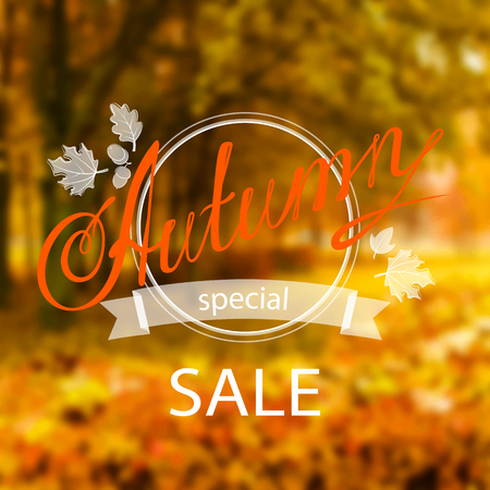 orange trees: inscription Autumn Sale with framing and leaves, on the realistic blur background with park and orange trees