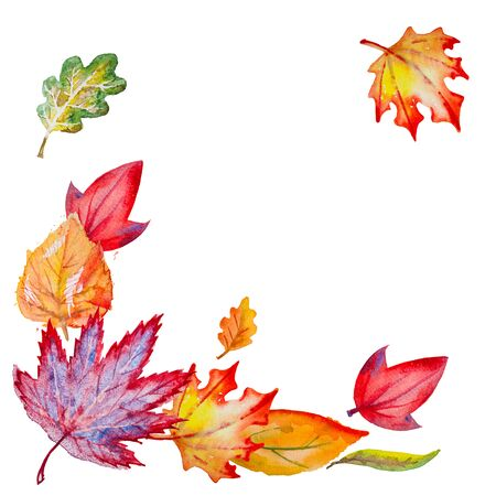 Composition with bright hand drawn watercolor orange,yellow,green,red and vinous leaves,isolated on the white background