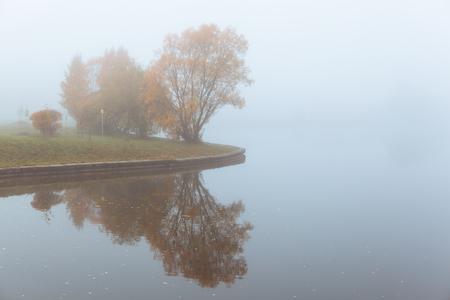 Foggy autumn landscape with orange trees and lake reflection