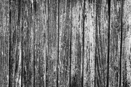 puertas de madera: Textura negra y blanca de la vieja puerta de madera