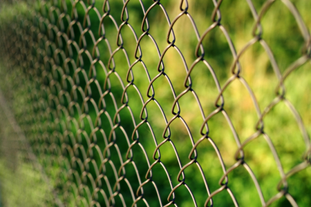 abatis: Wire netting - depth of field