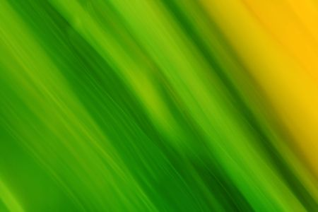 Abstract green/yellow background with lines Stock Photo - 1906827