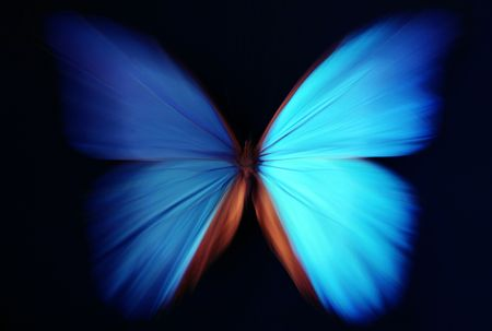 blur: Beautiful butterfly blue abstract with zoom effect - morpho Stock Photo