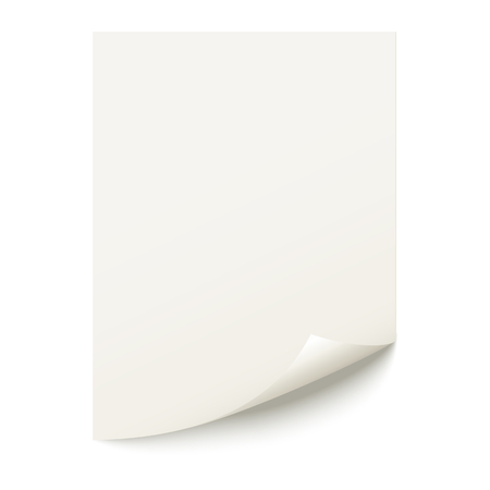 Sheet of paper on a white background  Vector