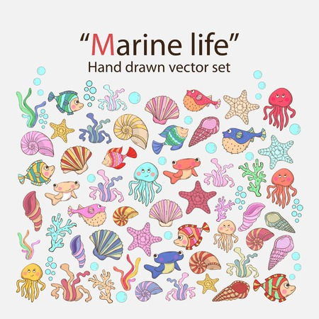 urchin: Vector marine life hand drawn set with various sea inhabitants, seaweed,sword fish,fish urchin, octopus, jellyfish,coral,shells, barnacles,algae in doddle style.Marine life.