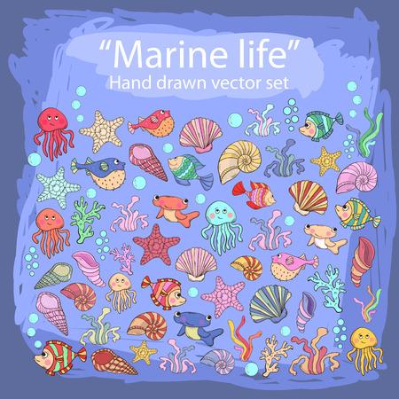 inhabitants: Mano drawn set con gli abitanti vari di mare, alghe, pesce spada, ricci di pesci, polpi, meduse, coralli, conchiglie, denti di cane, alghe nella vita style.Marine doddle.