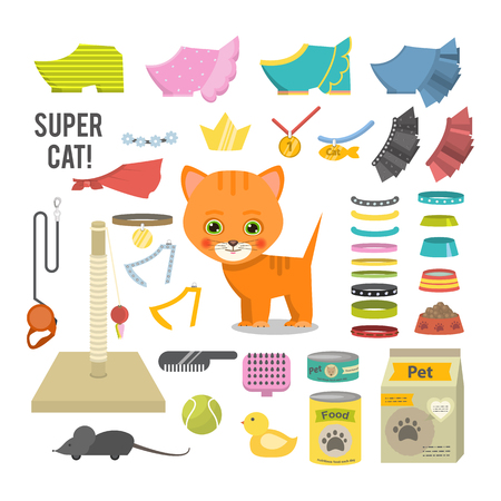 Ilustración de gato y accesorios. Ilustración de vector